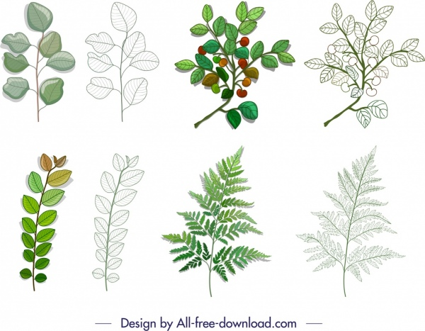 leaf branch icons colored modern sketch