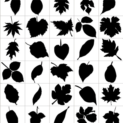 Leaf Silhouettes   Free Vector Graphic