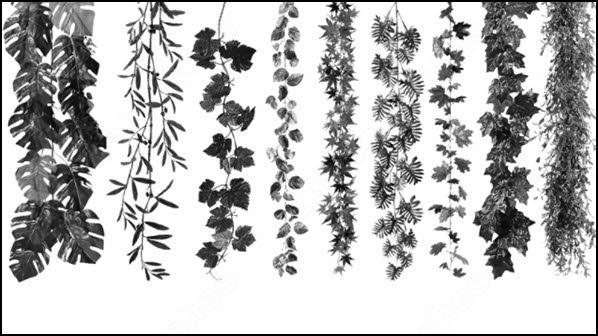 leaves brush
