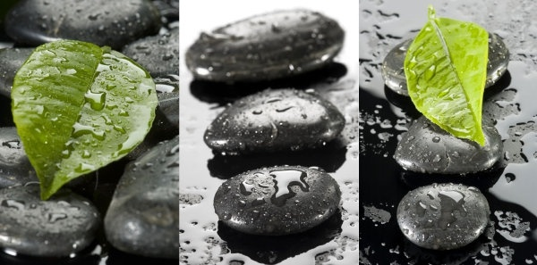 leaves stones droplets highdefinition picture