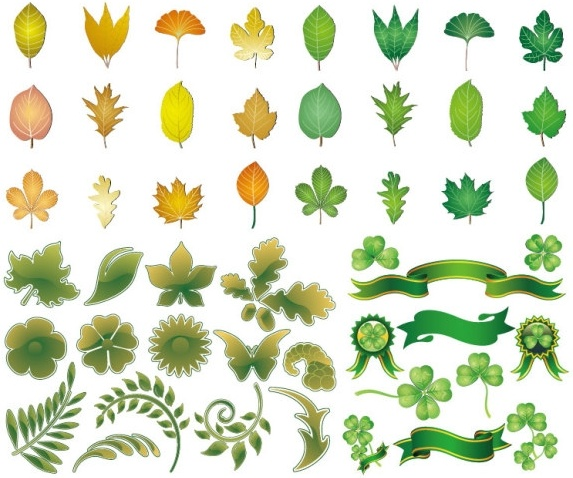 leaves theme vector