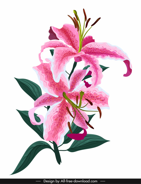 lily flower painting colorful classical sketch