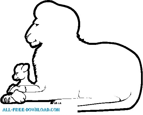 Lion And Lamb Frame Free Vector 2116KB