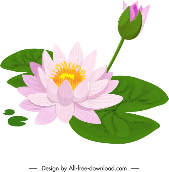 Lotus Flower Painting Colorful Classical Handdrawn Sketch Free