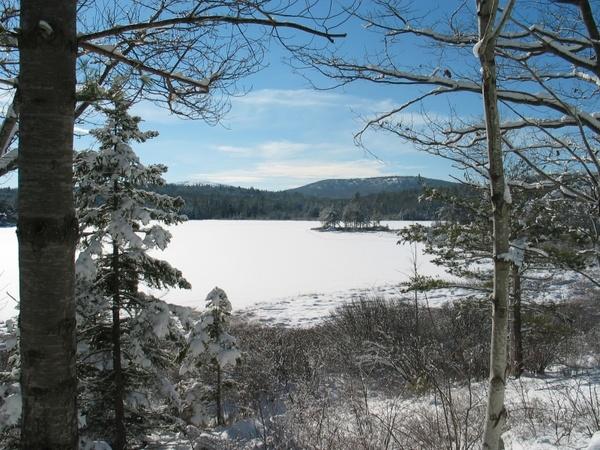 maine lake water