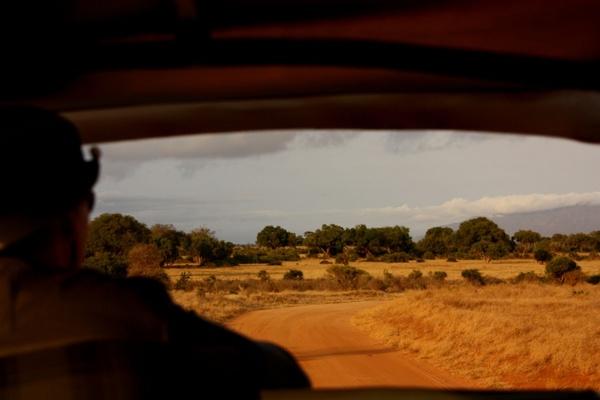 man on safari 2