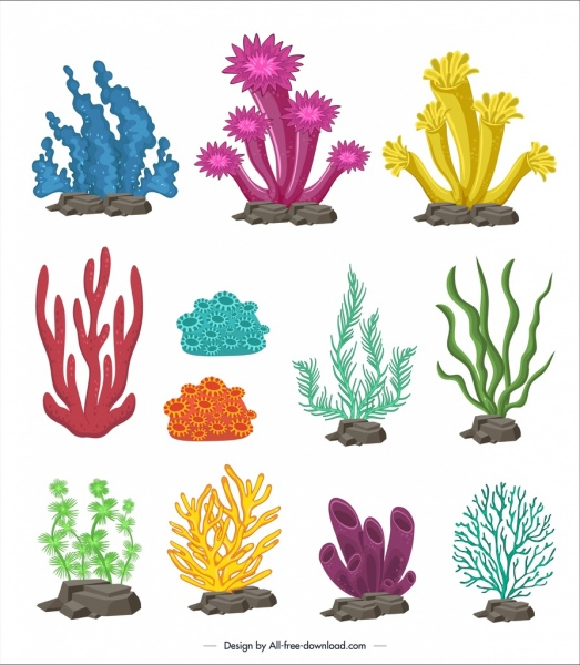 Coral Vector Free Vector Download (101 Free Vector ) For
