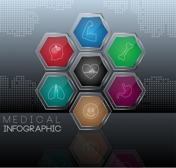 medical infographic shiny multicolored hexagon decor organ symbols