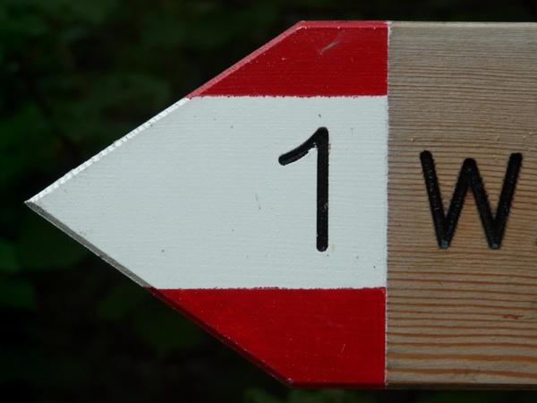 migratory character signpost mark