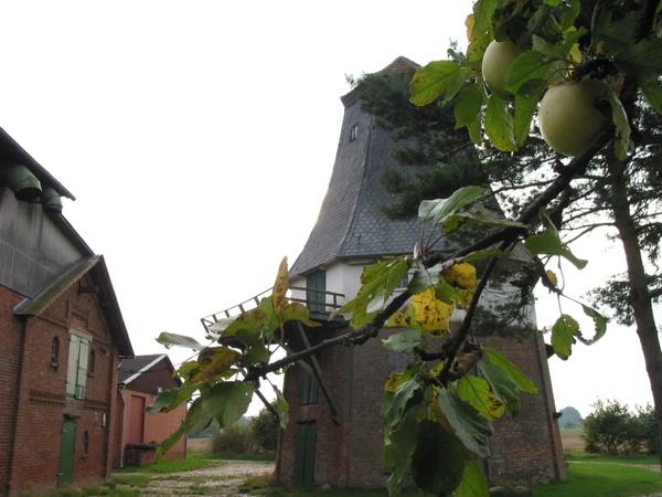 mill windmill autumn