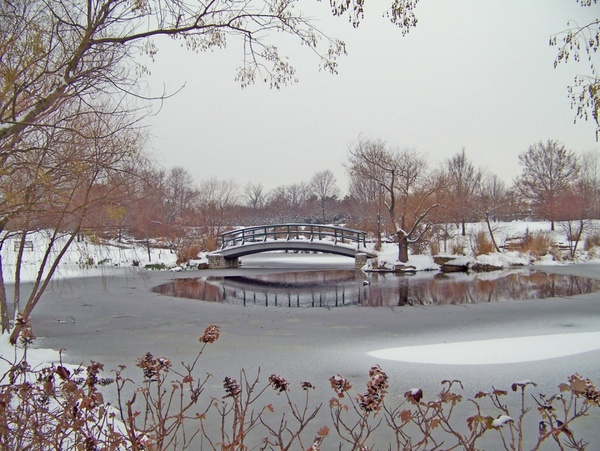 monet bridge in snowcovered park