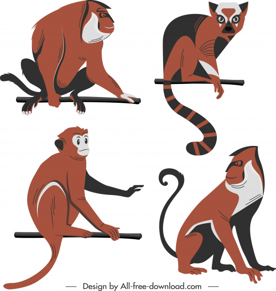 monkey species icons colored classic design