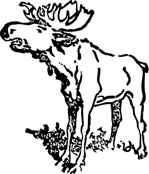 free moose vector image free vector download  57 free