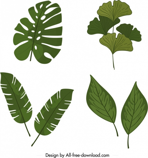 natural leaves icons templates classical green shapes