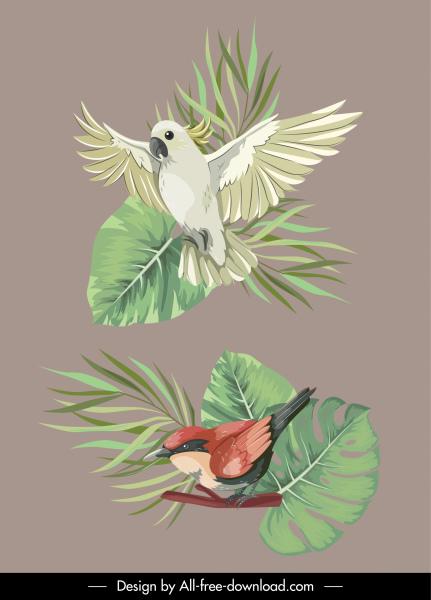 nature design elements bird species leaf sketch