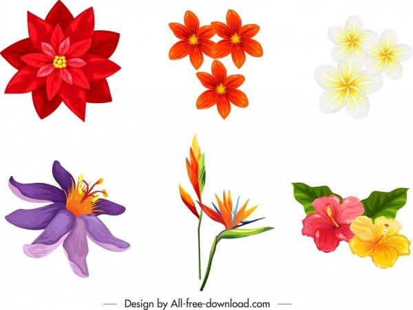nature design elements colorful flora icons