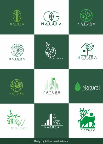 nature logo templates flat green leaf sketch