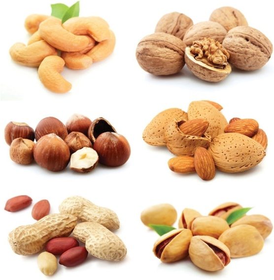 nuts and dried fruit 03 hd pictures