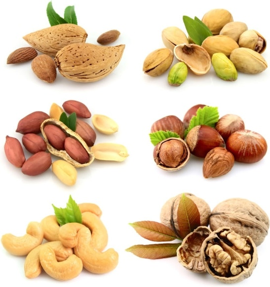 nuts and dried fruit 05 hd pictures