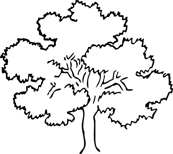 Oak Tree Clip Art Free Vector In Open Office Drawing Svg Svg