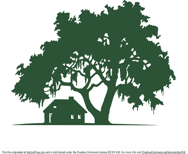 oak vector free vector download (87 free vector) for commercial