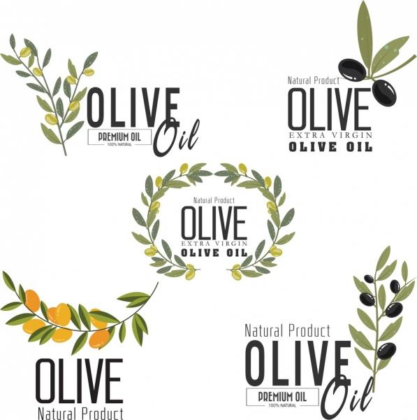 olive oil logotypes fruit leaf icons various decoration
