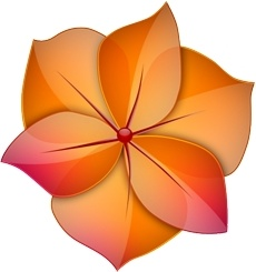 Orange and red flower