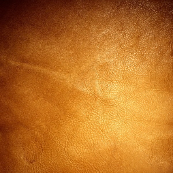 orange background color series of highdefinition picture 10