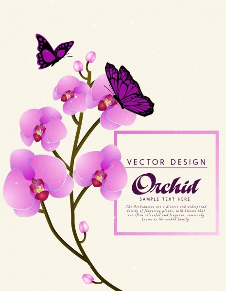 orchid background violet butterfly icons decoration