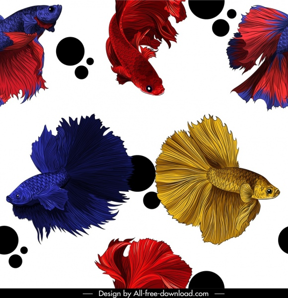 ornamental fishes pattern modern colorful motion design