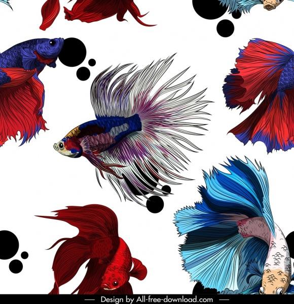 ornamental fishes pattern multicolored motion decor