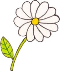 Osd flower