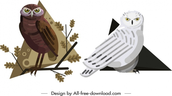 owl animal icons brown white design cartoon sketch