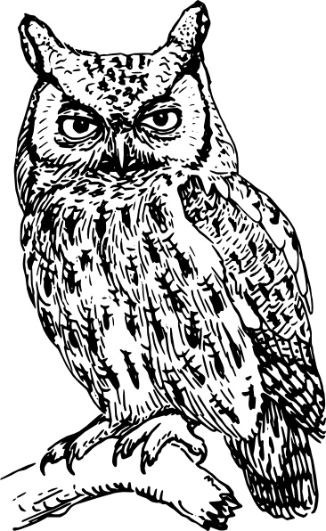 Owl Clip Art Free Vector In Open Office Drawing Svg Svg Vector