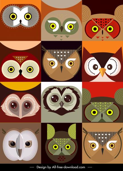 owl faces backgrounds colored flat symmetric design