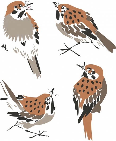 sparrow icons classical flat handdrawn sketch