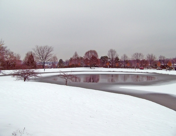 partially frozen pond