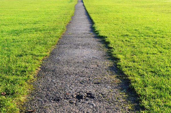 path and lawn
