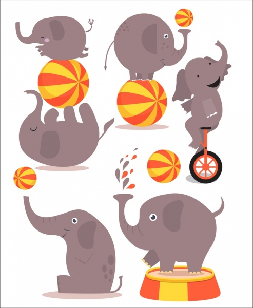 performing elephant icons colored cartoon design