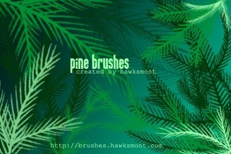 Pine Brushes - MEGA PACK