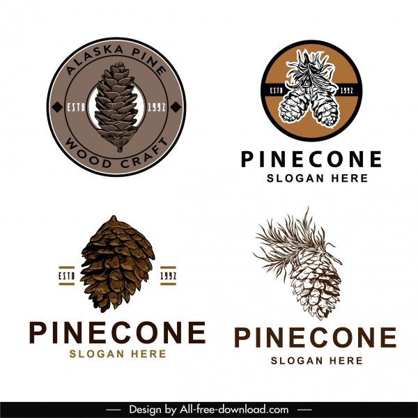 pine cone logo templates elegant vintage handdrawn