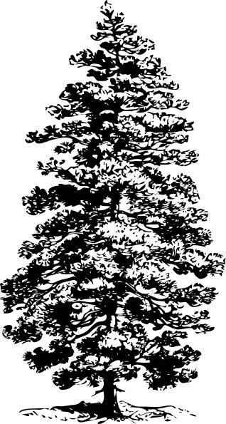 Clip Art Calendar December : Pine tree clip art free vector in open office drawing svg