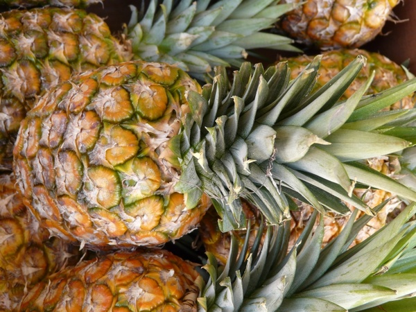 pineapple fruit sweet