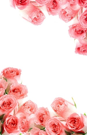 pink bouquet of roses picture