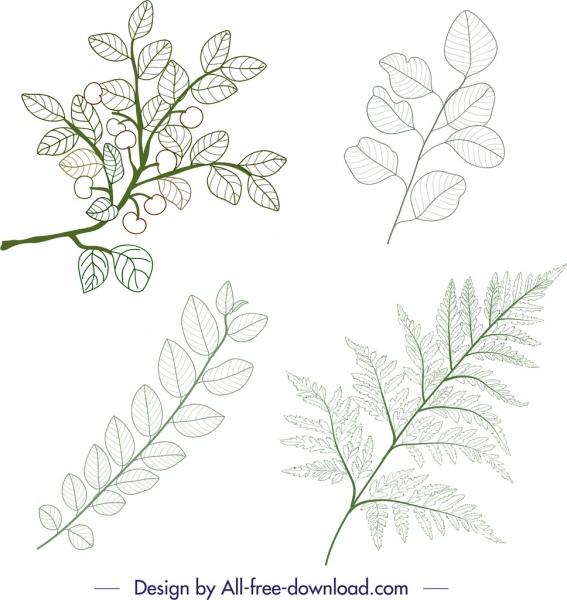 plant icons green leaf branch sketch