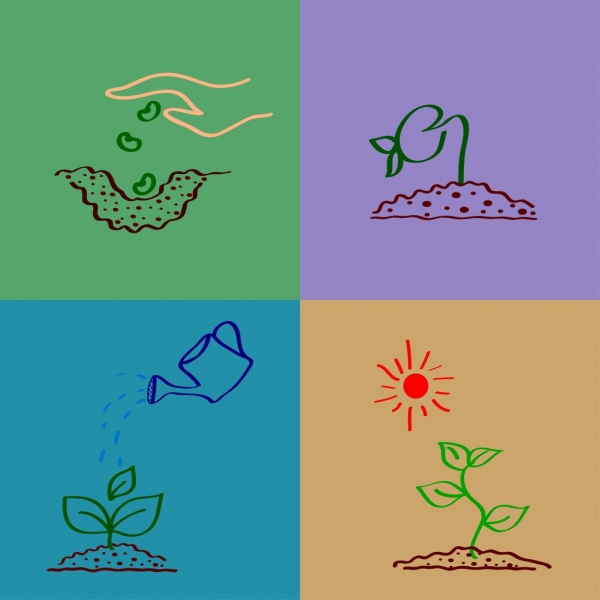 planting tree process outline hand drawn style