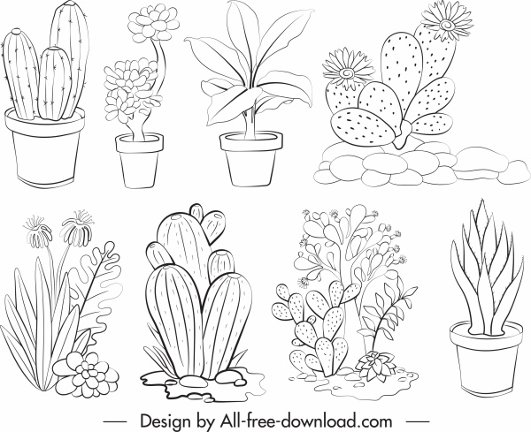 plants icons black white handdrawn sketch