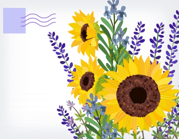 postcard template sunflowers icon multicolored classical design free