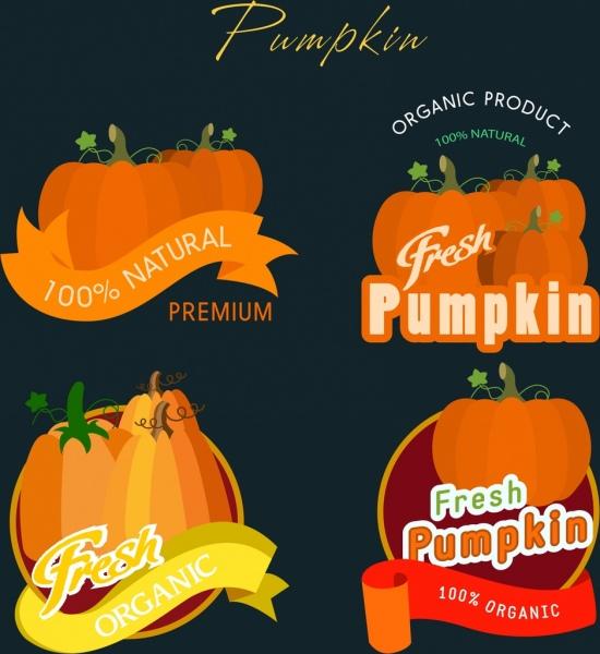 pumpkin logotypes collection orange design ribbon calligraphic decor