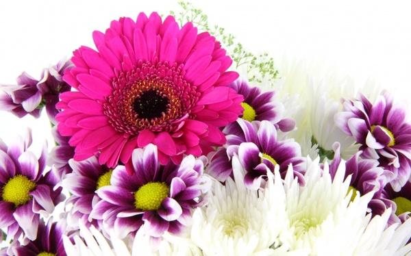purple flower bouquet